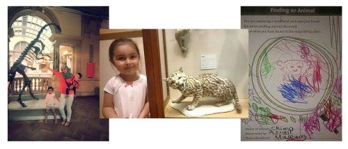 museum, fun, learning, skeletons, fun, day out